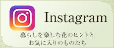instagram(暮らしを楽しむ花のヒントとお気に入りのものたち)